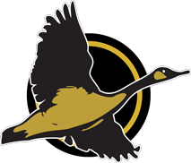 willows high school logo